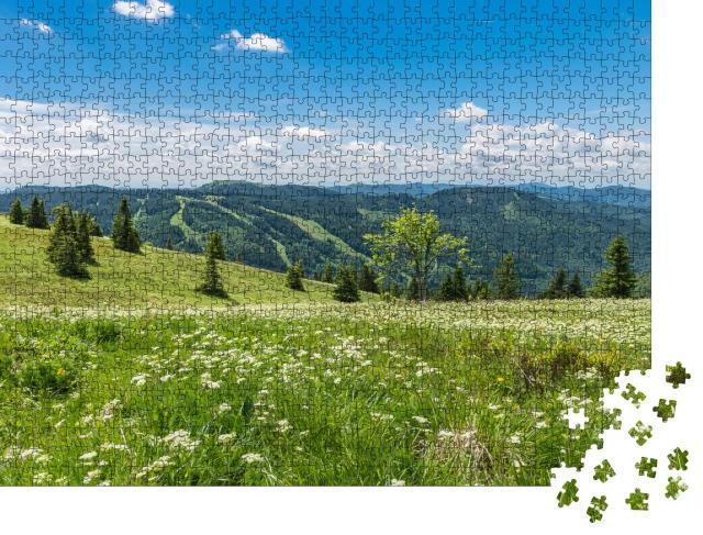 """Puzzle 1000 Teile """"Schöner Schwarzwald"""""""