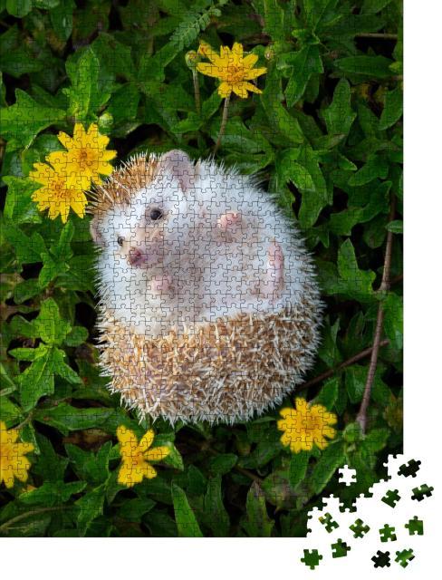 """Puzzle 1000 Teile """"Ein kleiner Igel im Blumengarten"""""""