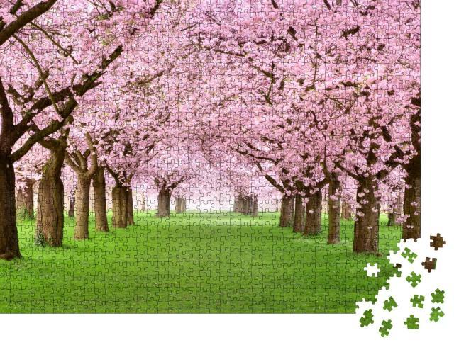"""Puzzle 1000 Teile """"Ziergarten mit majestätisch blühenden Kirschbäumen auf frischem grünen Rasen"""""""