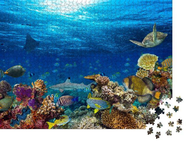 """Puzzle 1000 Teile """"Blauer Ozean und bunte Unterwasserwelt"""""""