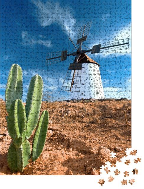 """Puzzle 1000 Teile """"Kaktus und traditionelle Windmühle auf Fuerteventura, Kanarische Inseln"""""""