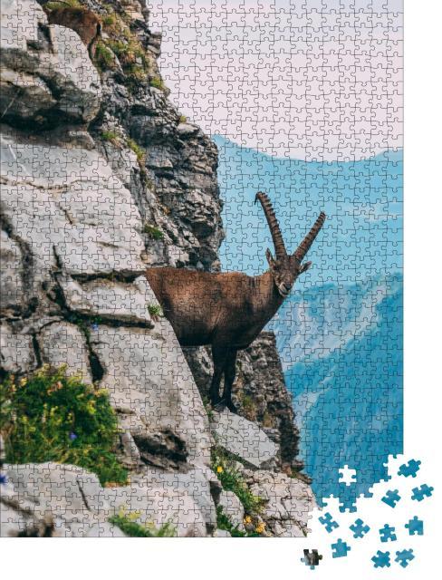 """Puzzle 1000 Teile """"Alpensteinbock in der Berglandschaft auf einem steilen Felsen"""""""