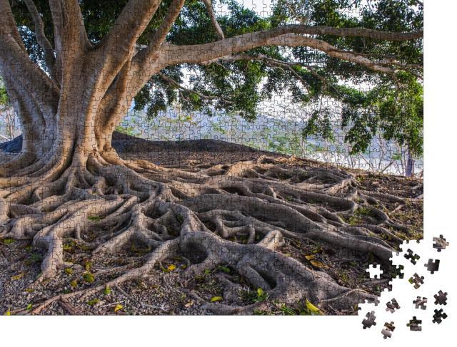"""Puzzle 1000 Teile """"Große Baumwurzel"""""""