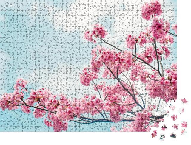 """Puzzle 1000 Teile """"Bezaubernde blühende Kirschzweige unter blauem Himmel"""""""