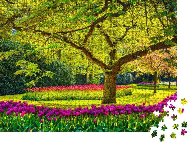 """Puzzle 1000 Teile """"Tulpen im Schatten eines alten Baumes, Keukenhof, Niederlande"""""""