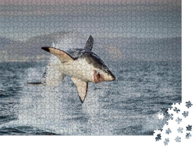 """Puzzle 1000 Teile """"Weißer Hai"""""""