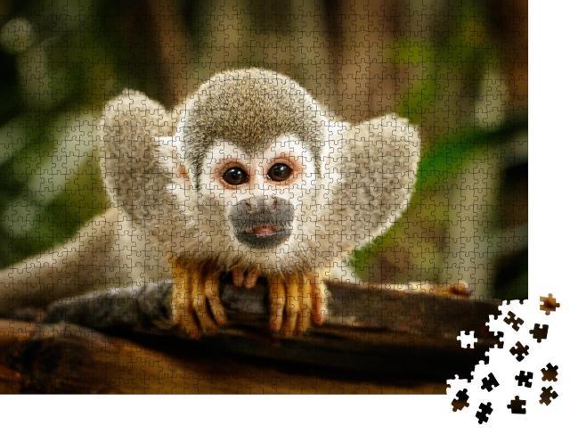 """Puzzle 1000 Teile """"Totenkopfäffchen im Amazonasgebiet"""""""