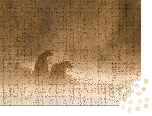"""Puzzle 1000 Teile """"Grizzlybär am goldenen Teich"""""""