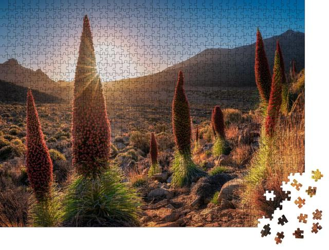 """Puzzle 1000 Teile """"Wilde Landschaft von Teneriffa, Kanarische Inseln"""""""