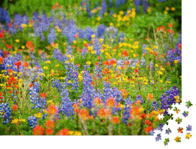 """Puzzle 1000 Teile """"Wildblumen in voller Pracht: Lupine, Indian Paintbrush und Yellow Asters"""""""