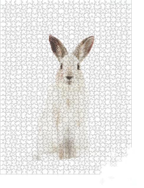 """Puzzle 1000 Teile """"WeißerSchneehase in seinem natürlichen Lebensraum"""""""