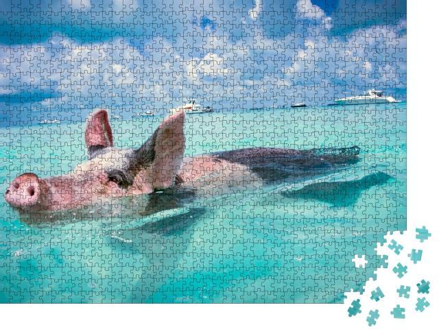 """Puzzle 1000 Teile """"Die schwimmenden Schweine der Bahamas"""""""