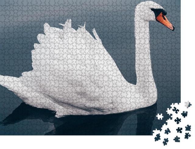 """Puzzle 1000 Teile """"Nahaufnahme eines weißen Schwanes auf dem Wasser"""""""