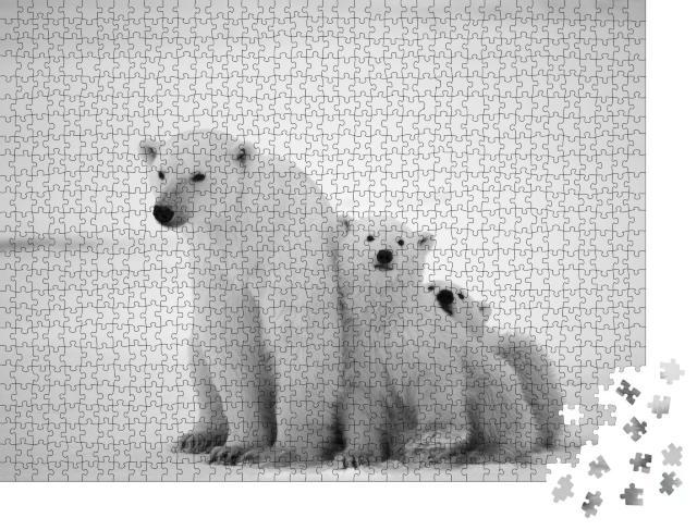 """Puzzle 1000 Teile """"Eisbärin mit Jungtieren"""""""