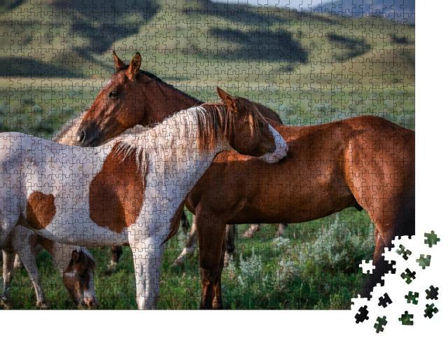 "Puzzle 1000 Teile ""Freunde: Paintpony und Ranch-Pferd, Montana, USA"""