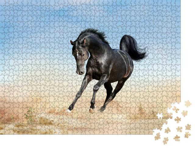 """Puzzle 1000 Teile """"akhal-teke Pferd läuft durch eine Wüste"""""""