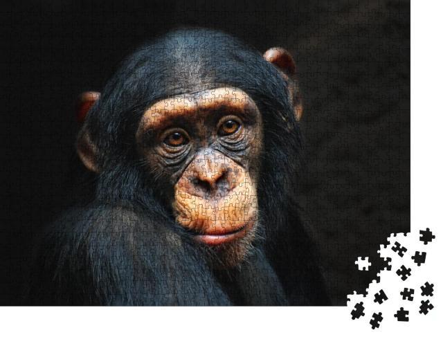 """Puzzle 1000 Teile """"Porträt eines Schimpansen"""""""