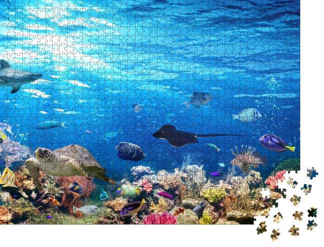 """Puzzle 1000 Teile """"Unterwasser-Szene mit Korallenriff, Fischen, Haien, Schildkröte und Manta"""""""