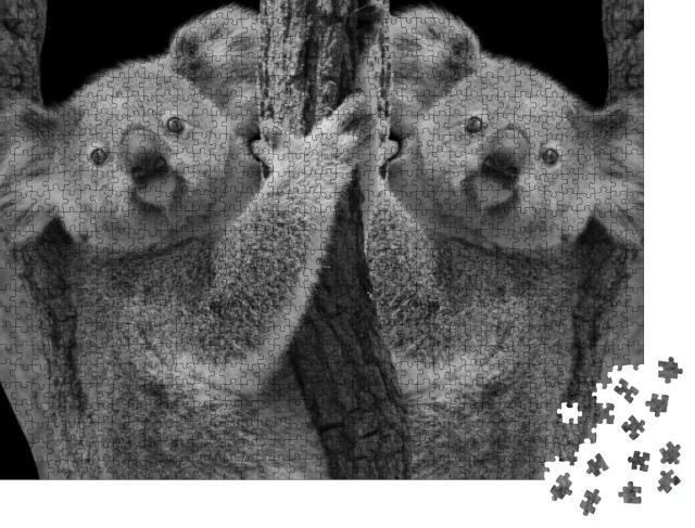 """Puzzle 1000 Teile """"Zwei niedliche Koalas im Baum"""""""