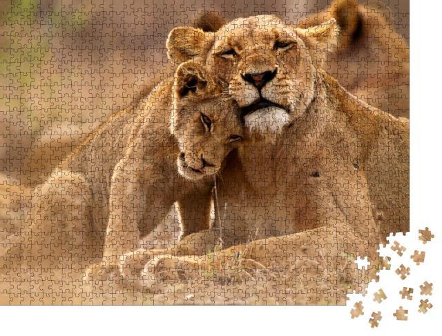"Puzzle 1000 Teile ""Löwin und Jungtier im Kruger National Park, Südafrika"""