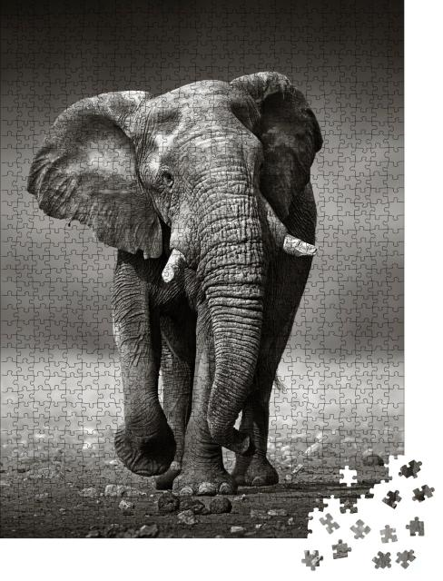 "Puzzle 1000 Teile ""Afrikanischer Elefant im Etosha-Nationalpark, Namibia, schwarz-weiß"""