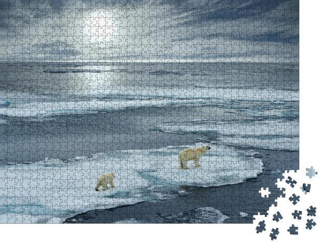 """Puzzle 1000 Teile """"Eisbärin mit Jungtier auf einer Eisscholle, Norwegen"""""""