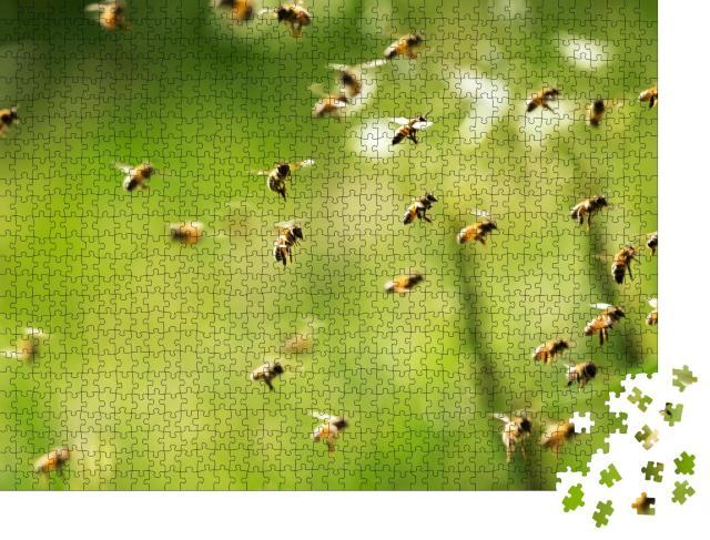 """Puzzle 1000 Teile """"Ein Bienenschwarm fliegt an einem sonnigen Tag"""""""