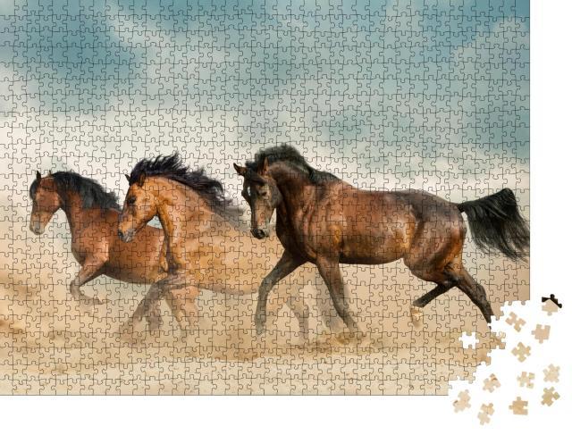 """Puzzle 1000 Teile """"Schöne braune Pferde streifen durch die Wüste"""""""