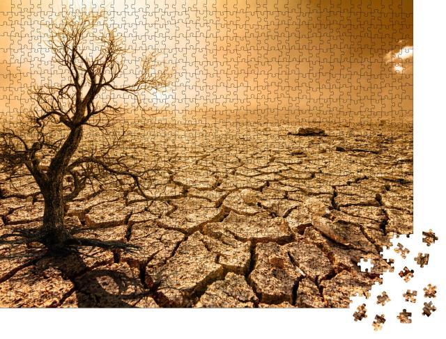 """Puzzle 1000 Teile """"Globale Erwärmung, Dürre, Austrocknung, tote Bäume"""""""