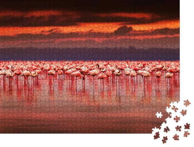 """Puzzle 1000 Teile """"Spektakulärer Sonnenuntergang über einer Gruppe Flamingos, Kenia"""""""