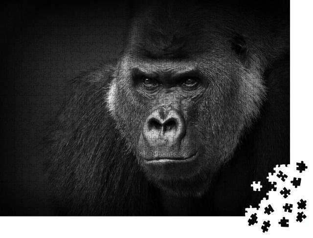 """Puzzle 1000 Teile """"Nahaufnahme eines gefährlich aussehenden Silberrückens, Gorilla"""""""