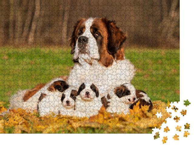 """Puzzle 1000 Teile """"Bernhardinerhund mit Welpen im Herbst"""""""