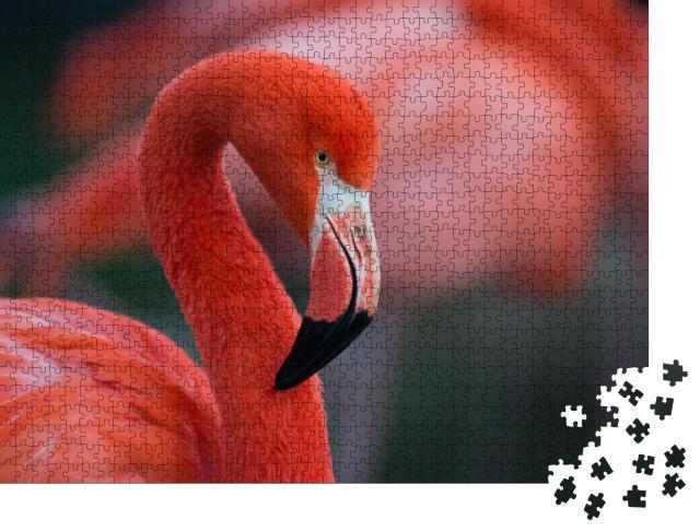 """Puzzle 1000 Teile """"Flamingo"""""""