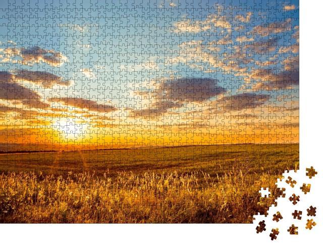 "Puzzle 1000 Teile ""Saratov Region, Russland: Goldene Morgendämmerun über endlosen Feldern"""