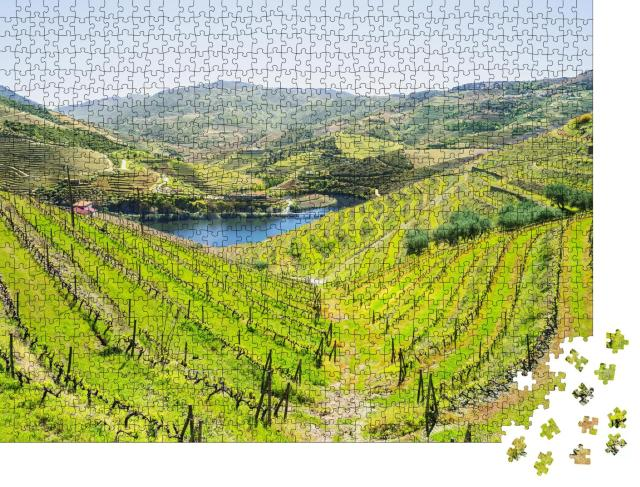 """Puzzle 1000 Teile """"Weinberge im Douro-Tal bei Pinhao, Portugal"""""""