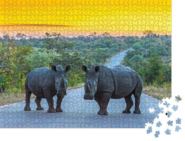 """Puzzle 1000 Teile """"Zwei Nashörner auf einer Straße bei Sonnenuntergang, Kruger Nationalpark, Südafrika"""""""