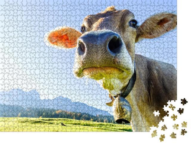 """Puzzle 1000 Teile """"Lustige Kuh am Kaisergebirge"""""""