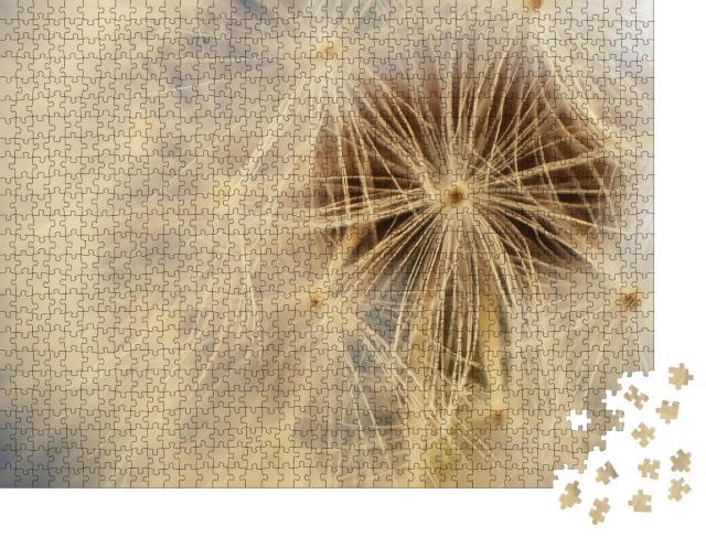 """Puzzle 1000 Teile """"Weißer flauschiger Kopf einer Löwenzahnblüte, Pusteblume"""""""