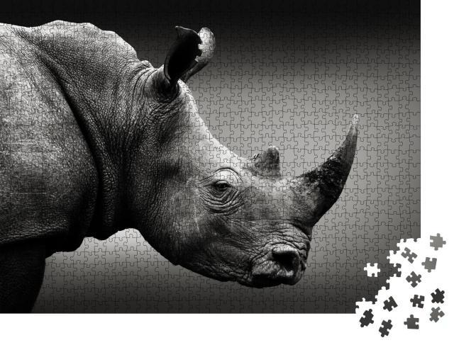 """Puzzle 1000 Teile """"Hochaufmerksames Nashorn in Schwarz-Weiß, Südafrika"""""""