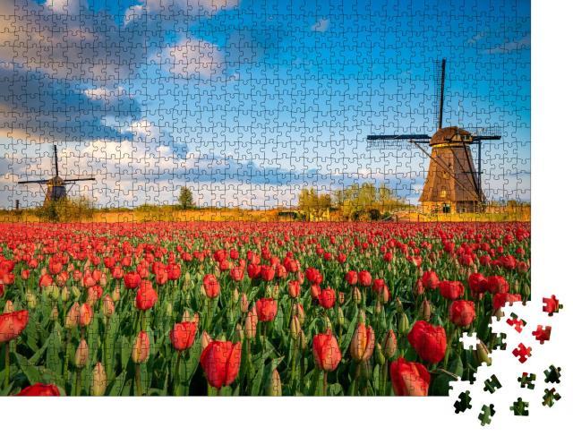 """Puzzle 1000 Teile """"Niederländische Landschaft mit Windmühlen und Tulpenblüten"""""""