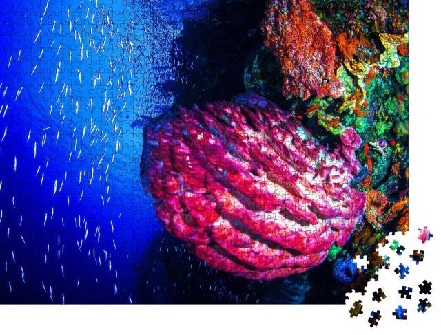 """Puzzle 1000 Teile """"Buntes Leben in der Unterwasserwelt"""""""