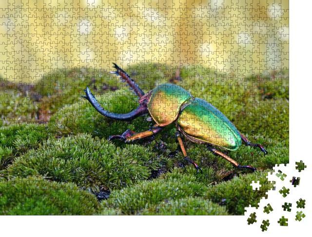 """Puzzle 1000 Teile """"Sägezahnkäfer oder Hirschkäfer, einer der schönsten Käfer der Welt"""""""