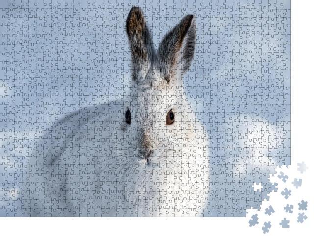 """Puzzle 1000 Teile """"Weißer Schneeschuhhase mit braunen Ohren"""""""
