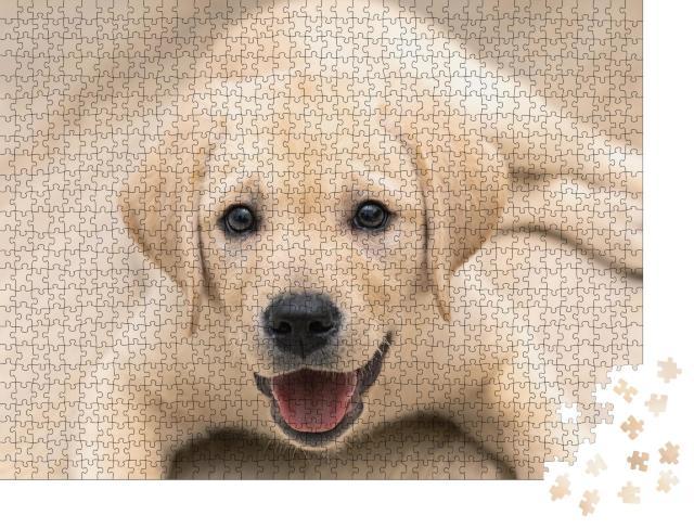"""Puzzle 1000 Teile """"Liebenswerter goldener Labrador-Welpe in Nahaufnahme"""""""