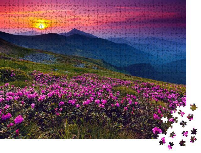 """Puzzle 1000 Teile """"Magische rosa Rhododendronblüten im Sonnenaufgang über den Bergen"""""""