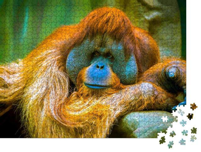 """Puzzle 1000 Teile """"Der Orang-Utan ist in einer Träumerei"""""""