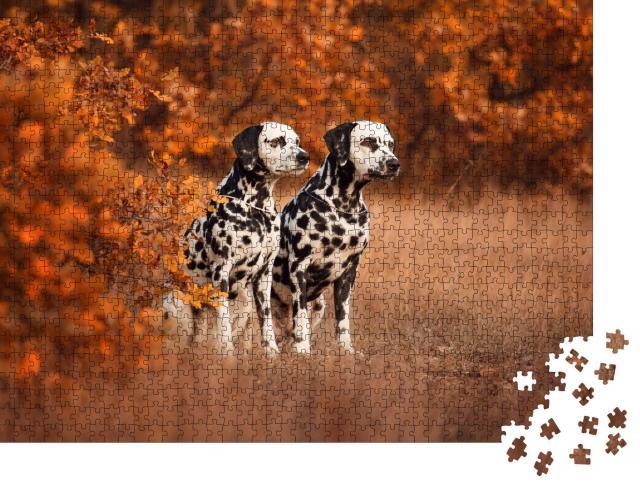 """Puzzle 1000 Teile """"Zwei Dalmatiner beim Spaziergang"""""""