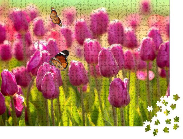 """Puzzle 1000 Teile """"Schöne Schmetterlinge und blühende Tulpen an einem sonnigen Frühlingstag"""""""