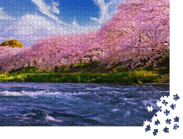 """Puzzle 1000 Teile """"Sakura: Kirschblüte in Japan, im Hintergrund der Vulkan Fuji"""""""