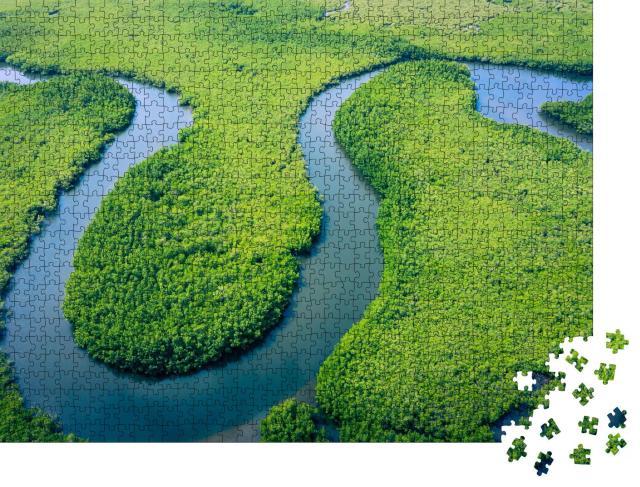 """Puzzle 1000 Teile """"Vogelperspektive auf den Amazonas-Regenwald in Brasilien"""""""